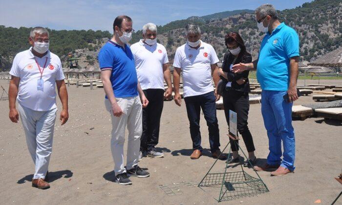 İztuzu Plajı gündüz turistleri gecede caretta carettaları ağırlıyor