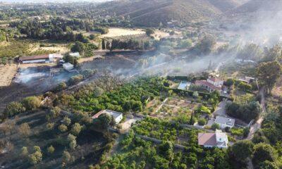 Yangında 10 hektarlık alan zarar gördü