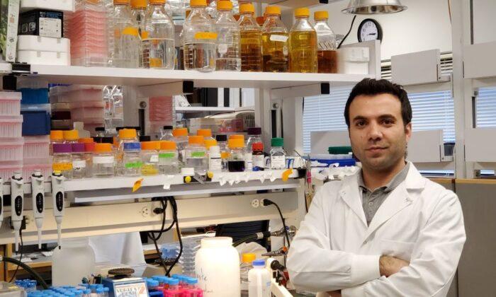 Harvardlı Türk bilim insanına 400 bin dolarlık ödül