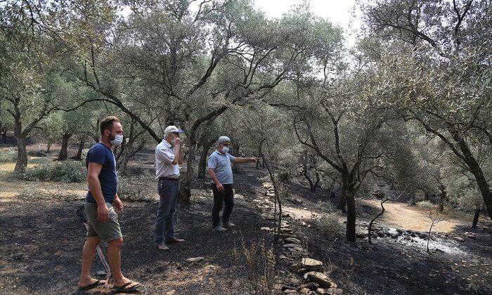 Orman yangını 17 saatte söndürüldü
