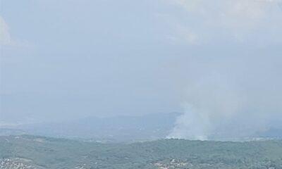 Orman yangınına hava ve karadan müdahale ediliyor