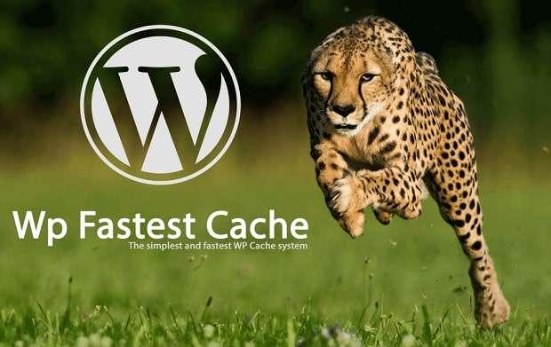 WordPress cache nedir, ne işe yarar?